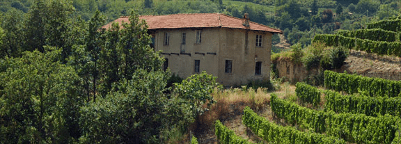 Picture of a Piedmont Property - an Italian farmhouse set back among rows of hedges